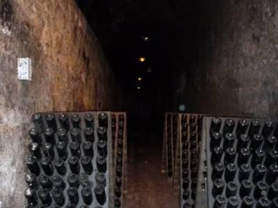 Enología en Rioja - Senderismo Camino de Santiago; rutas a caballo en madrid